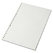 植林木不易透页活页纸 B5/5mm方格/100张