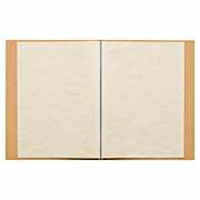 再生纸透明文件袋 A4 10袋 带内页 / 黄土颜色