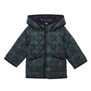 中棉 绗缝夹克