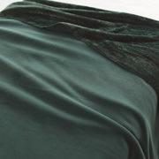 再生PET聚酯纤维 单面摇粒绒毛毯  D・180×200cm 绿色